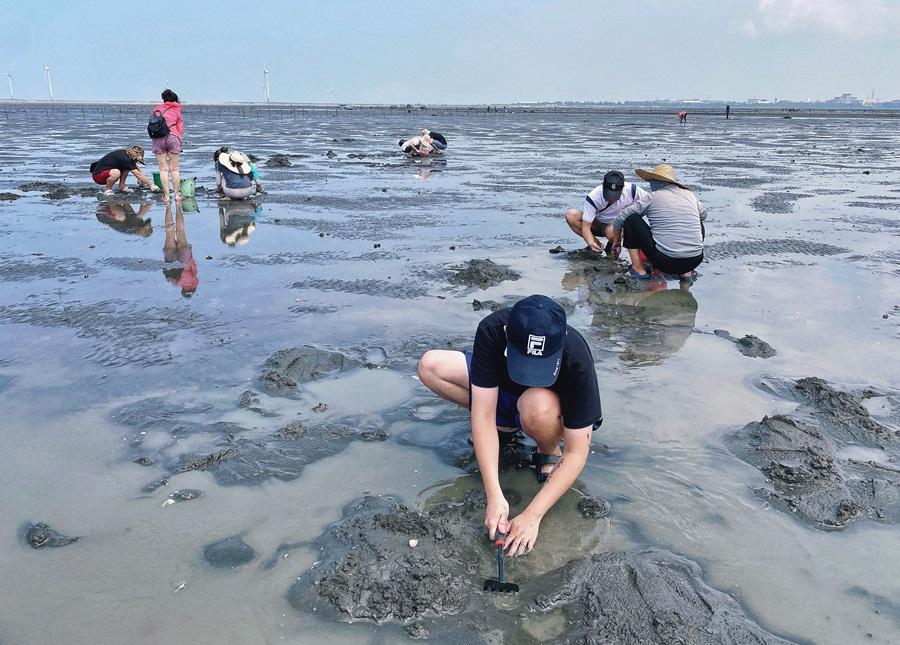 彰化福興景點【濱海濕地】免費挖白蛤仔超有趣新奇體驗!親近大自然的生態之旅!