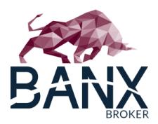 """Banxbroker - Optionen handeln schon ab 1,80 EUR bzw. 3,- USD mit dem Aktienscode """"Mission-Cashflow"""""""