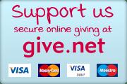 Online donation button