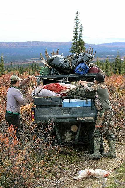 Moose Load