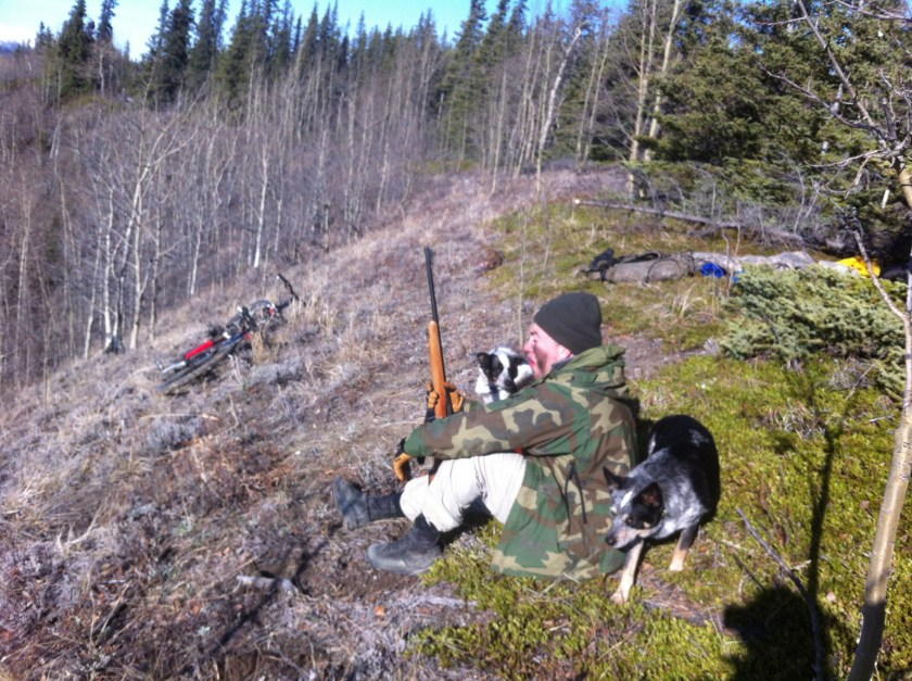 Glassing for grizzlies in spring 2013