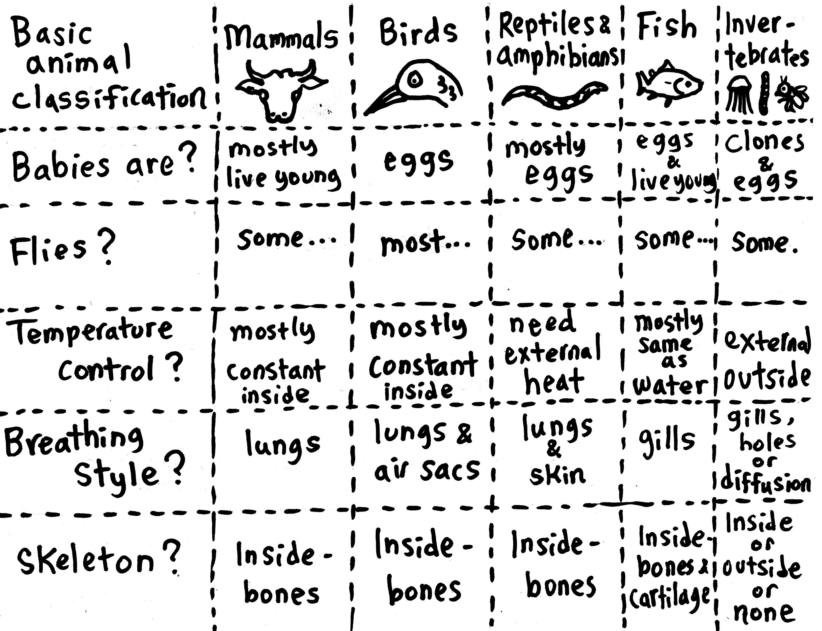 29 Invertebrates Rule
