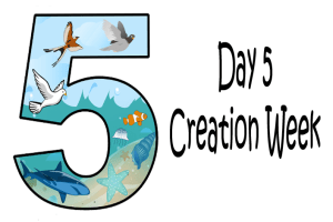 Day 5-God Created Birds and Fish – Mission Bible Class