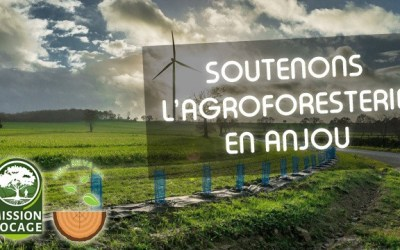 Soutenons l'agroforesterie en Anjou !
