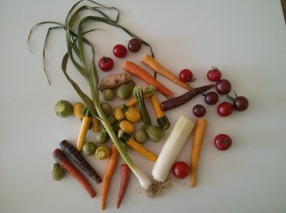 légumes mini coucous