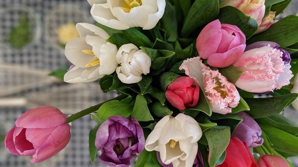 Un bouquet de tulipes pour enjoliver une table