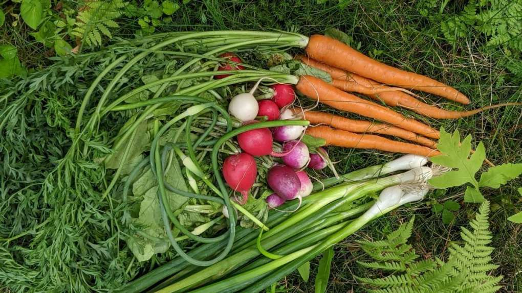 ode aux récoltes