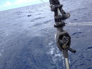 41. Joyful continued to sail Westbound toward French Polynesia as the NOAA drifter buoy began to drift in the South Pacific Ocean.