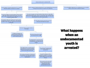 What happens when a youth is arrested? (click to enlarge)