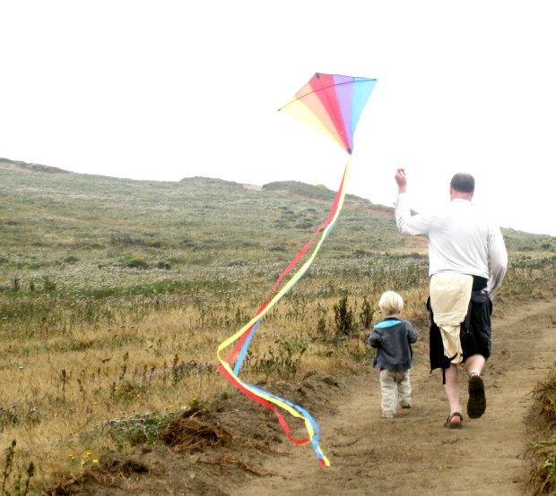 Kite flying at Bodega Bay