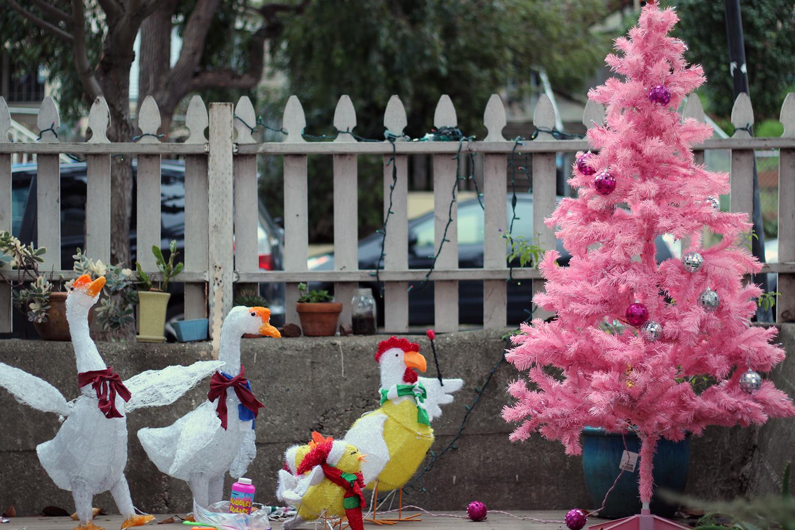 Holiday Decorations. Photo by Jamie Goldberg