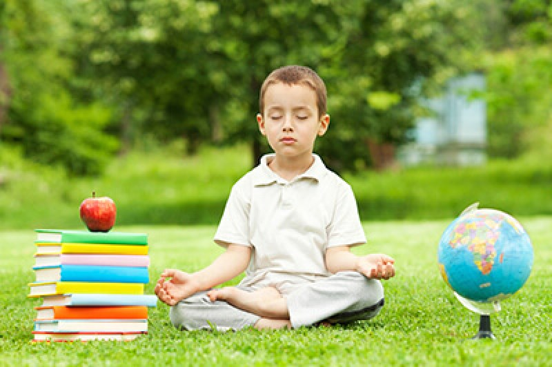 Mindfulness - Social and Emotional Learning   Mission