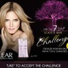 Free Clear Hair Care 7 Day Sample (Facebook Offer)