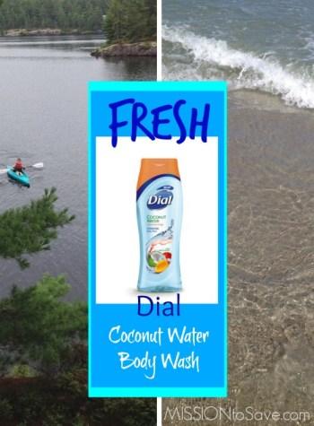 Dial Coconut Body Wash