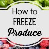 How to Freeze Produce – Tips for Freezing Vegetables and Fruit
