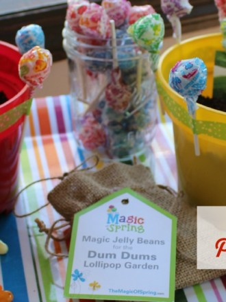 Dum Dums Garden Produce Planters The Magic of Spring