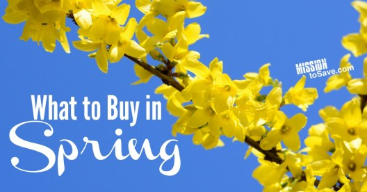 What to buy in spring to get the best savings