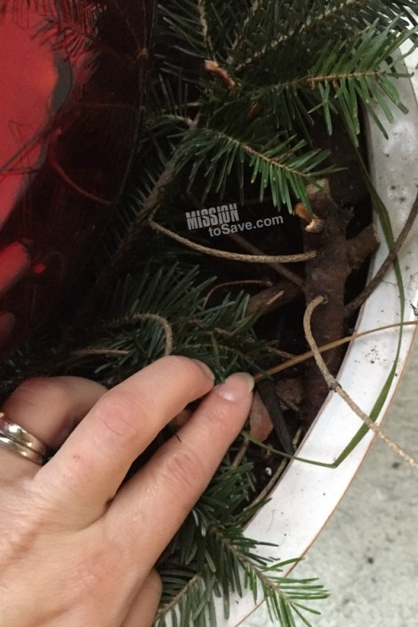 christmas-tree-clippings-in-planter
