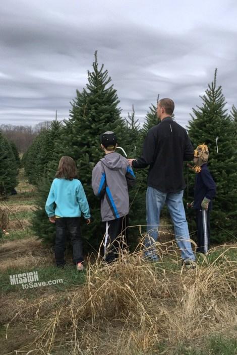 green-friday-christmas-tree