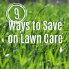 9 Ways to Save on Lawn Care and Gardening this Season