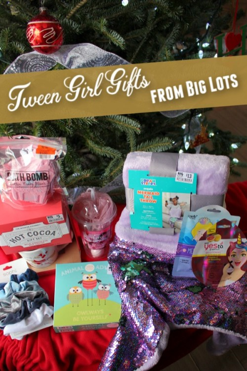 So many cute items for tween girl gifts at Big Lots