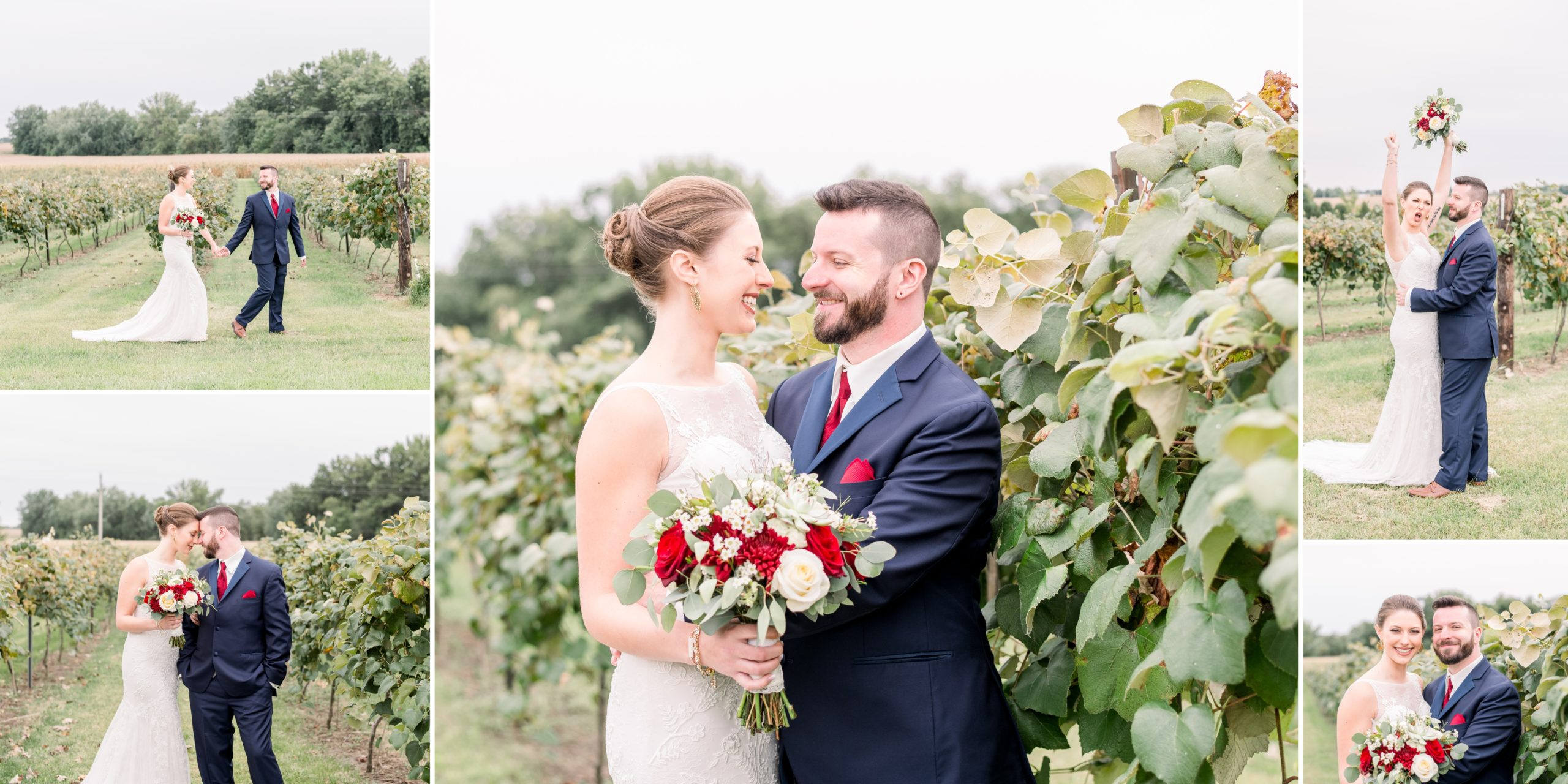 The bride and groom seeing each other for the first time amongst the grapevines of the vineyard in Dewitt, Iowa