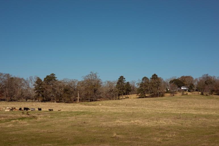 Ferris Farm on Fisher Ferry Road in Warren County where Bill Ferris grew up