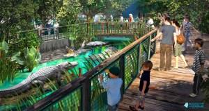 Mississippi Aquarium rendering of an alligator exhibit