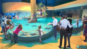 Rendering of a Touch Tank at the Mississippi Aquarium