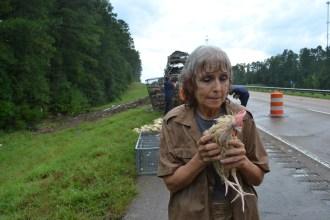 Doll Stanley holds a chicken after an 18-wheeler wreck