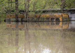 An old school bus is seen in the backwater flooding in Issaquena County Friday, April 5, 2019.