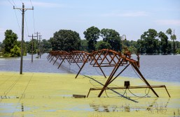 Flood water surrounds an irrigation system in the Mississippi Delta.