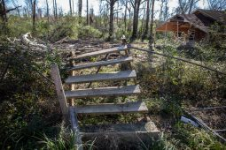 Stairs that once led to a trailer were swept away by Monday's tornado in Edwards, Miss.