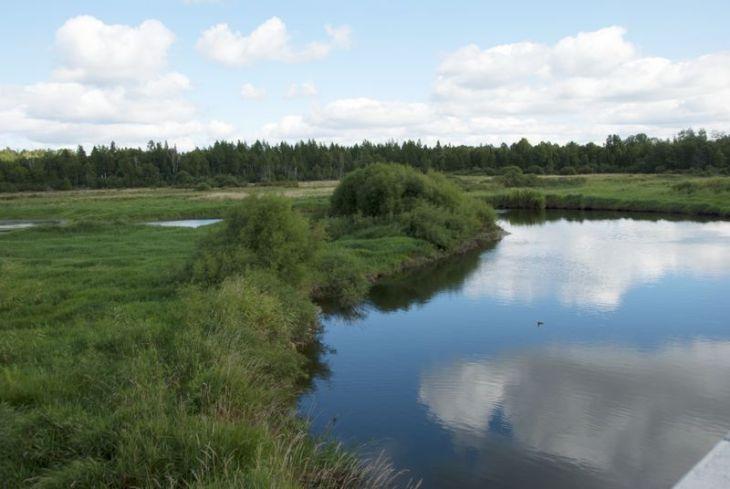 Mississippi River near Little Winnie Lake