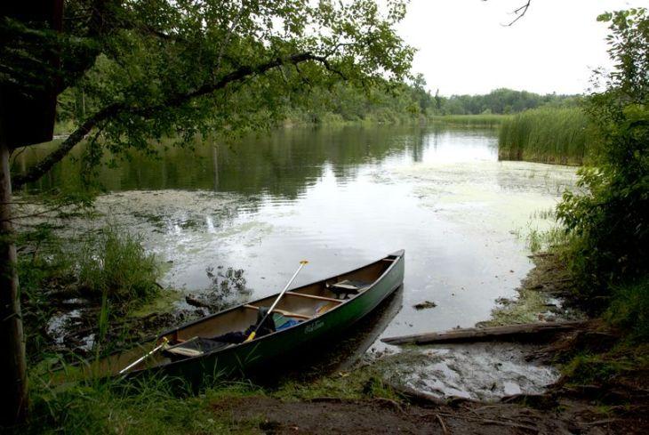 Happiness: Mississippi River east of Bemidji