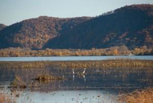 Trempealeau Wildlife Refuge (WI)