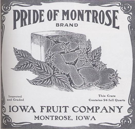 tn_MontroseFruit.