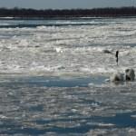 Ice at Oquawka, Illinois