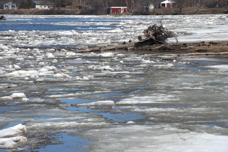 tn_Rapids City IL ice01