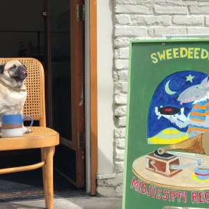 SweeDeeDeeDog Postcard