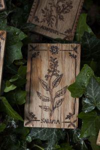 Décoration carte de tarot en bois inspirée des gravures anciennes botaniques de plantes, naturalisme, salvia,sauge, upcyclé, par l'atelier de la Lettre aux ours - Missive to Bears, artisanat écologique et français en Normandie