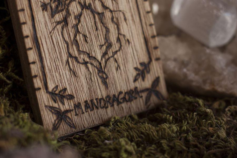 Décoration carte de tarot en bois inspirée des gravures anciennes botaniques de plantes, naturalisme, mandragore, upcyclé, par l'atelier de la Lettre aux ours - Missive to Bears, artisanat écologique et français en Normandie