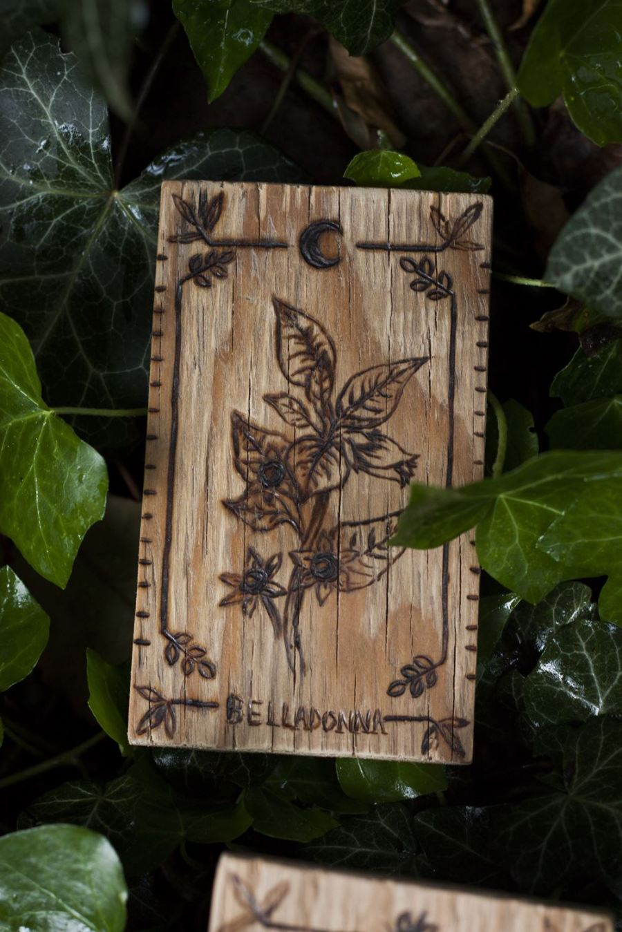 Décoration carte de tarot en bois inspirée des gravures anciennes botaniques de plantes, naturalisme, belladone, upcyclé, par l'atelier de la Lettre aux ours - Missive to Bears, artisanat écologique et français en Normandie