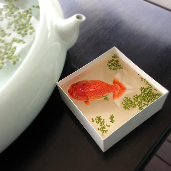 Keng-Lye-3D-Fish-Paintings-9