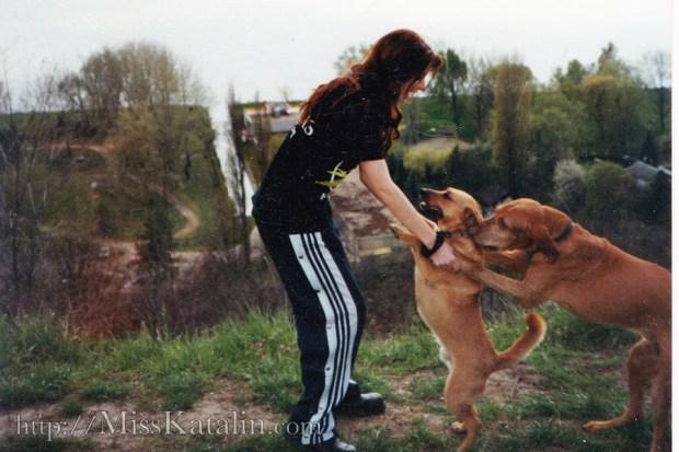 Katalin_dogs