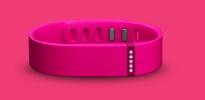 Fitbit Flex / Quelle: www.fitbit.com