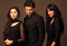 Pakistani Television Humsafar