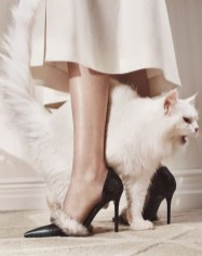 the-cats-meow-photographed-by-emma-tempest-for-w-magazine-october-2015-balenciaga-shoes-fendi-dress