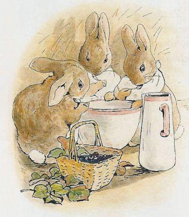 Beatrix Potter illustration