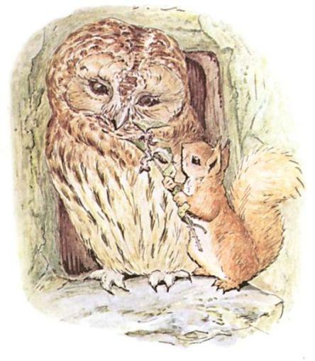 owl squirrel beatrix potter